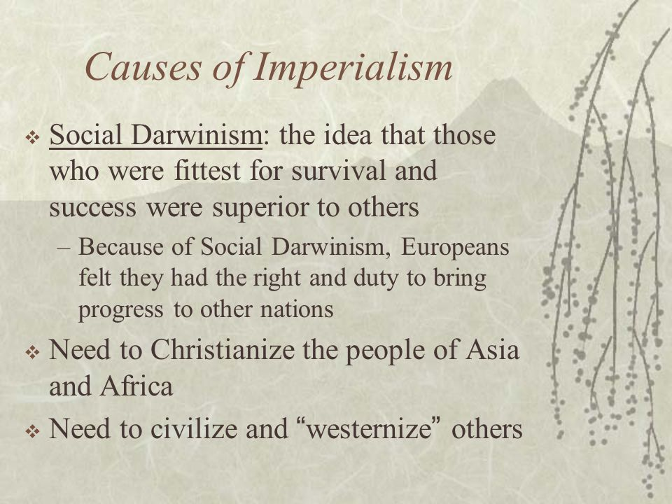 Causes of Imperialism  Social Darwinism: the idea that those who were fittest for survival and success were superior to others –Because of Social Dar