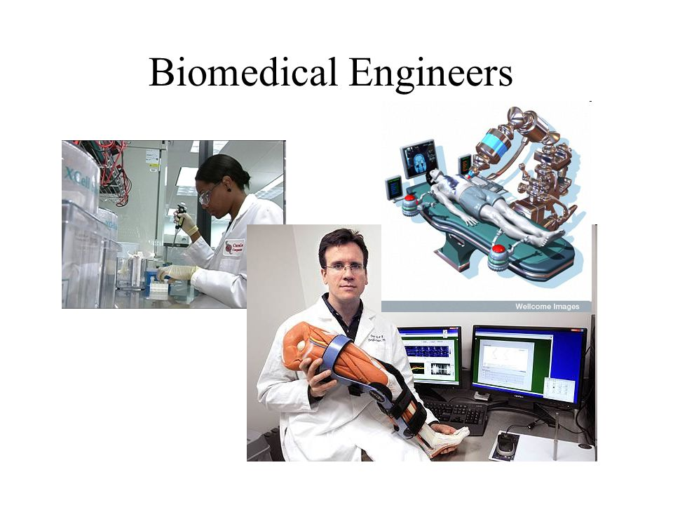 Biomedical Engineers