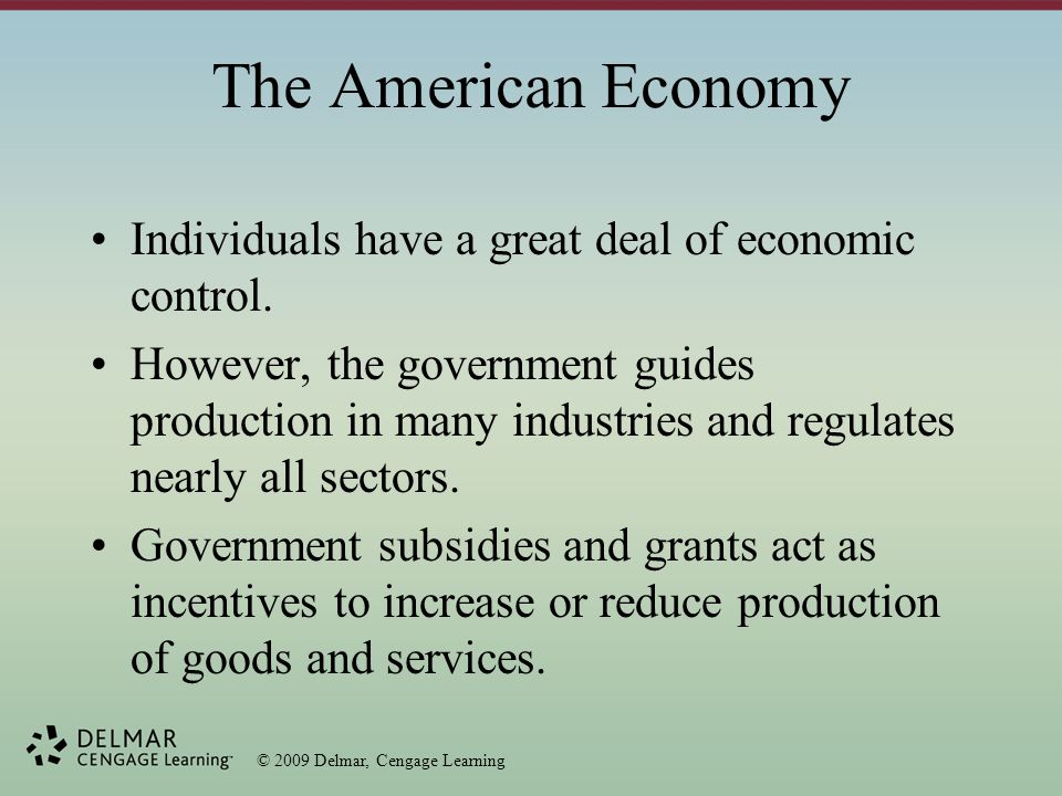 © 2009 Delmar, Cengage Learning The American Economy Individuals have a great deal of economic control.