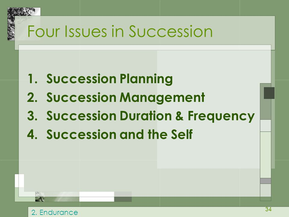 34 Four Issues in Succession 1.Succession Planning 2.Succession Management 3.Succession Duration & Frequency 4.Succession and the Self 2.