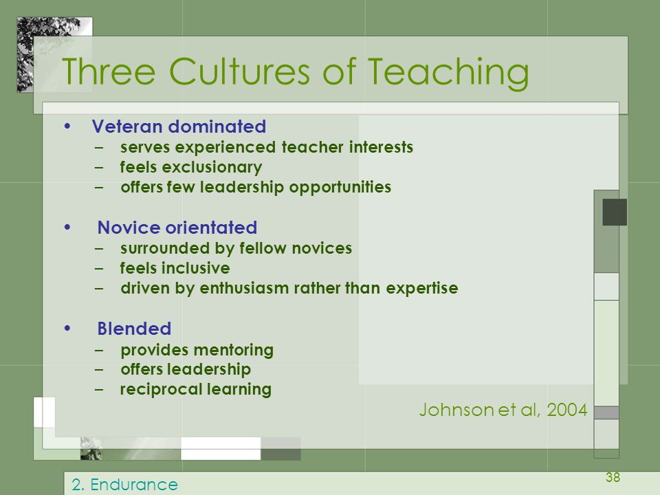 38 Three Cultures of Teaching Veteran dominated – serves experienced teacher interests – feels exclusionary – offers few leadership opportunities Novice orientated – surrounded by fellow novices – feels inclusive – driven by enthusiasm rather than expertise Blended – provides mentoring – offers leadership – reciprocal learning Johnson et al, 2004 2.