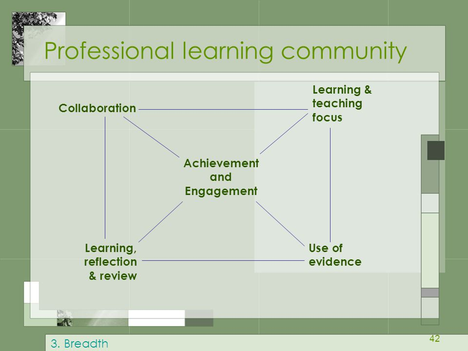 42 Professional learning community Collaboration Learning & teaching focus Achievement and Engagement Learning, reflection & review Use of evidence 3.