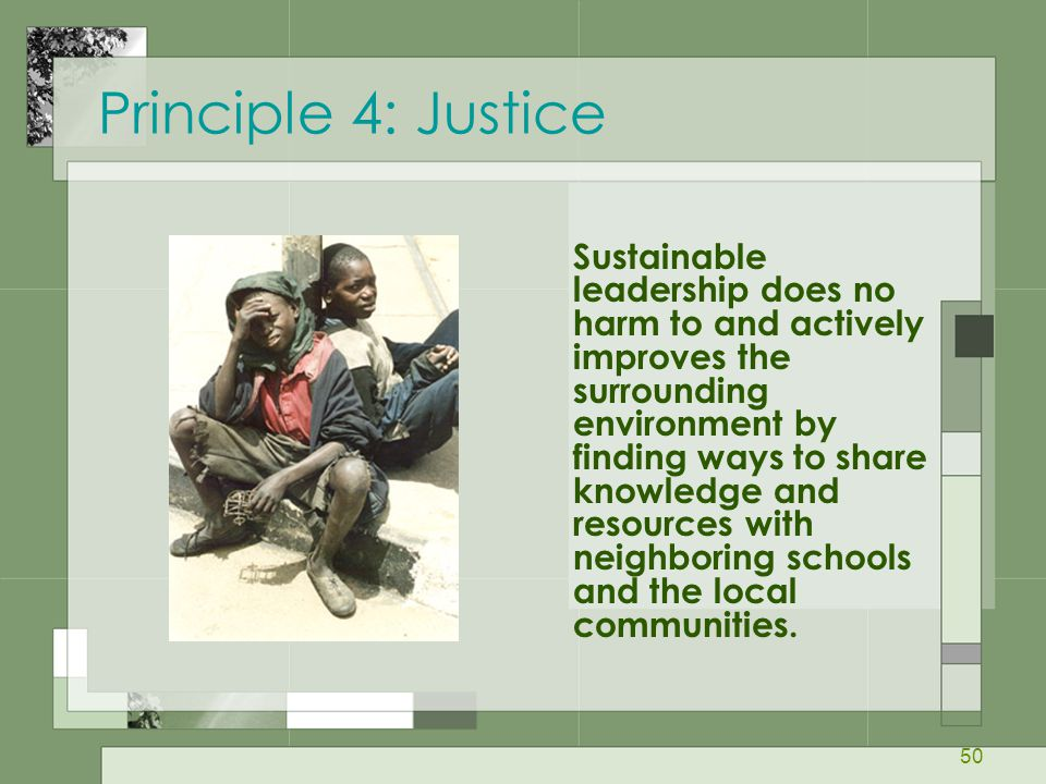 50 Principle 4: Justice Sustainable leadership does no harm to and actively improves the surrounding environment by finding ways to share knowledge an
