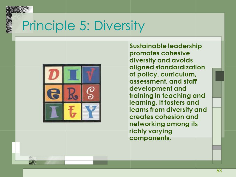 53 Principle 5: Diversity Sustainable leadership promotes cohesive diversity and avoids aligned standardization of policy, curriculum, assessment, and