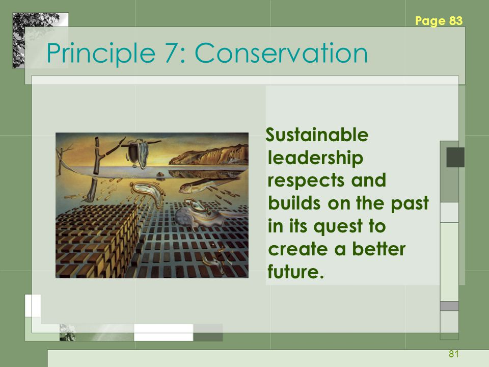 81 Principle 7: Conservation Sustainable leadership respects and builds on the past in its quest to create a better future.