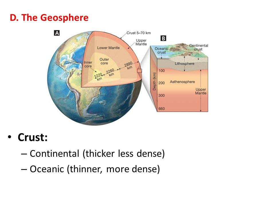 Crust: – Continental (thicker less dense) – Oceanic (thinner, more dense) D. The Geosphere
