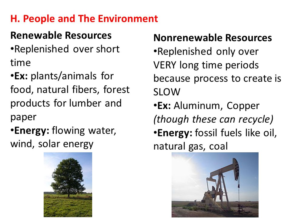 H. People and The Environment Renewable Resources Replenished over short time Ex: plants/animals for food, natural fibers, forest products for lumber