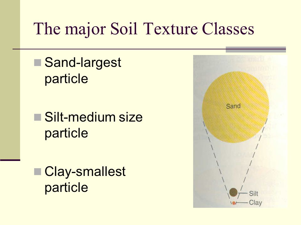 What is soil texture It is the relative sizes of the different soil particles.