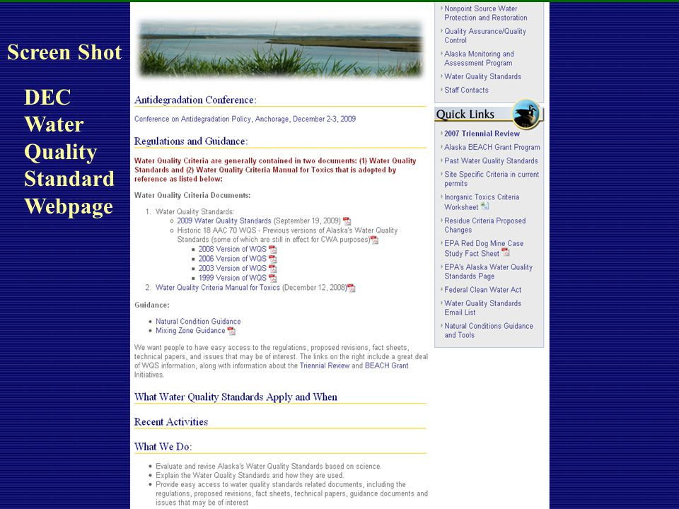 4-14-0318 DEC Water Quality Standard Webpage Screen Shot