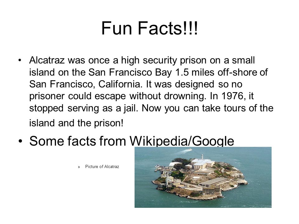 Fun Facts!!.