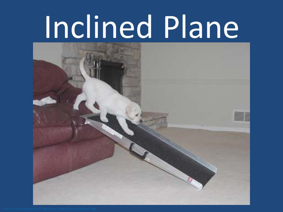 Inclined Plane http://www.handiramp.com/Dog-Ramps/Images/Small-Al-Ramp-L3.jpg