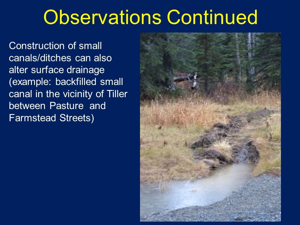 Construction of small canals/ditches can also alter surface drainage (example: backfilled small canal in the vicinity of Tiller between Pasture and Farmstead Streets) Observations Continued