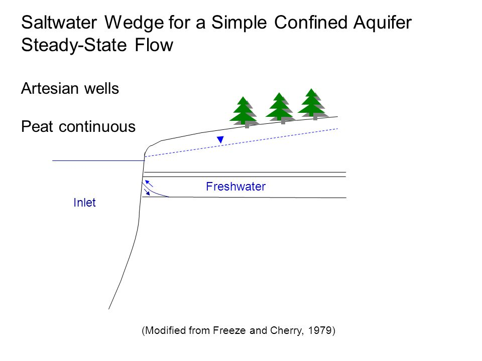 Inlet Saltwater Wedge for a Simple Confined Aquifer Steady-State Flow Artesian wells Peat continuous Freshwater (Modified from Freeze and Cherry, 1979)