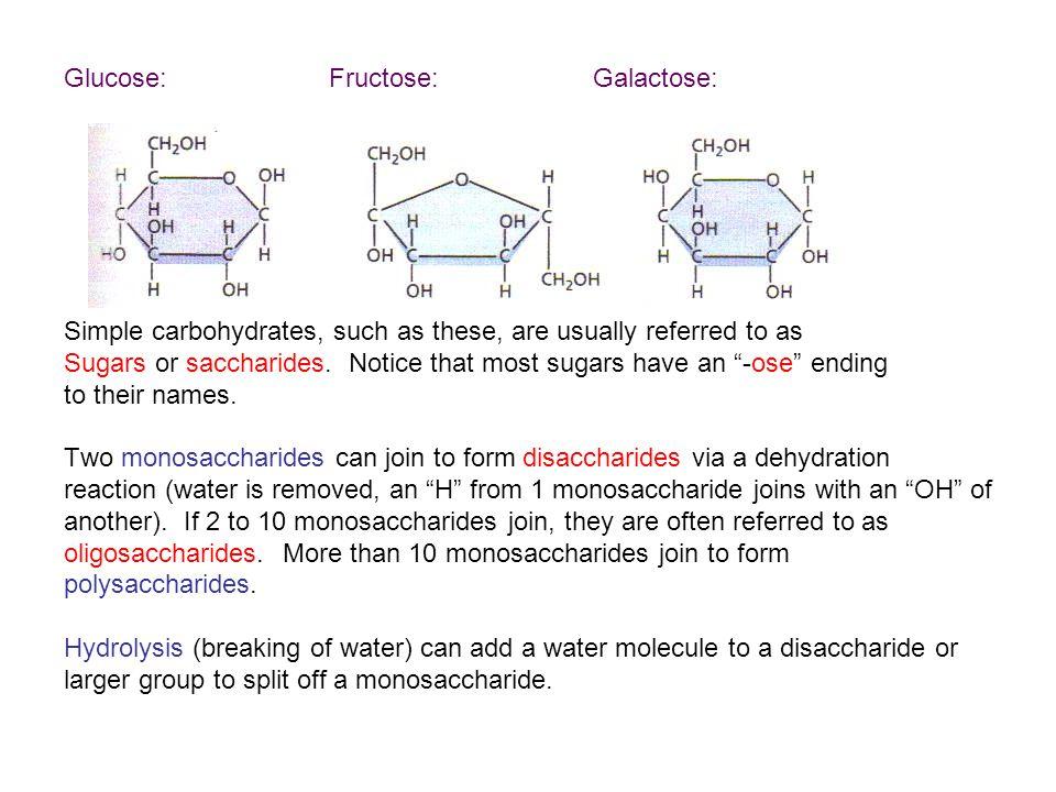 Maltose (grain sugar) and sucrose (table sugar) are both disaccharides.