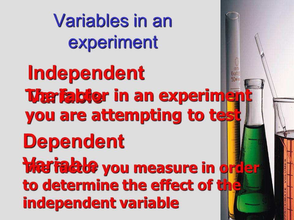 Variables in an experiment You need to change ONE thing at a time Then do the experiment and see what happens.