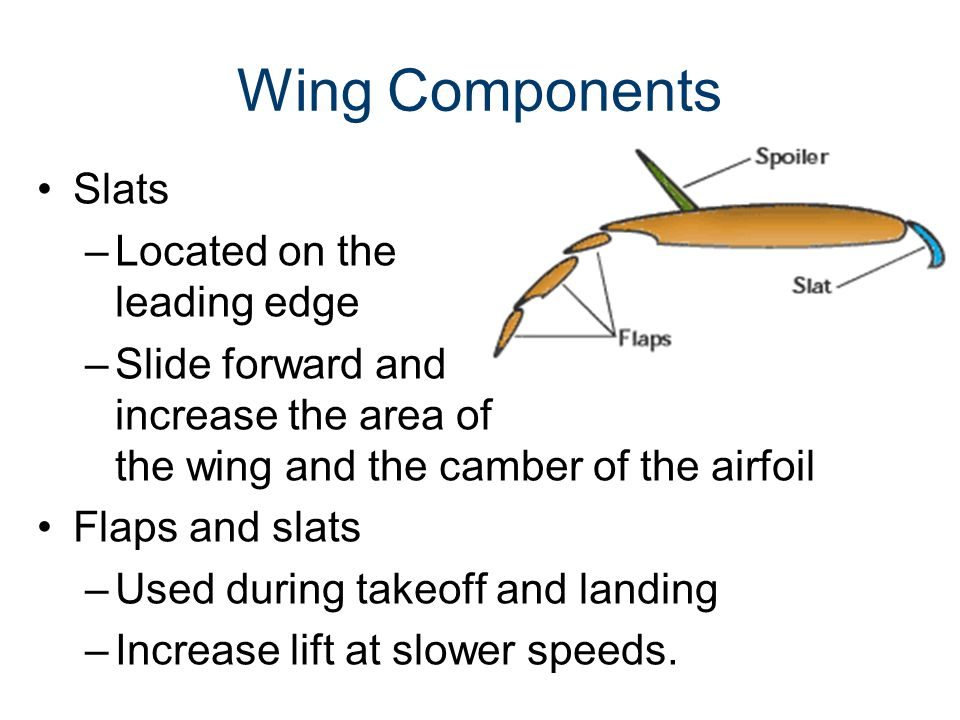 Wing Components Slats –Located on the leading edge –Slide forward and increase the area of the wing and the camber of the airfoil Flaps and slats –Use