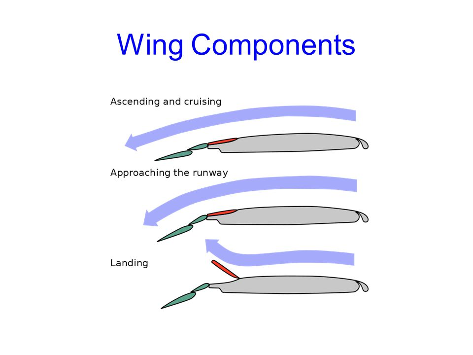 Wing Components