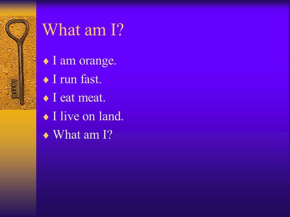 What am I?  I am orange.  I run fast.  I eat meat.  I live on land.  What am I?