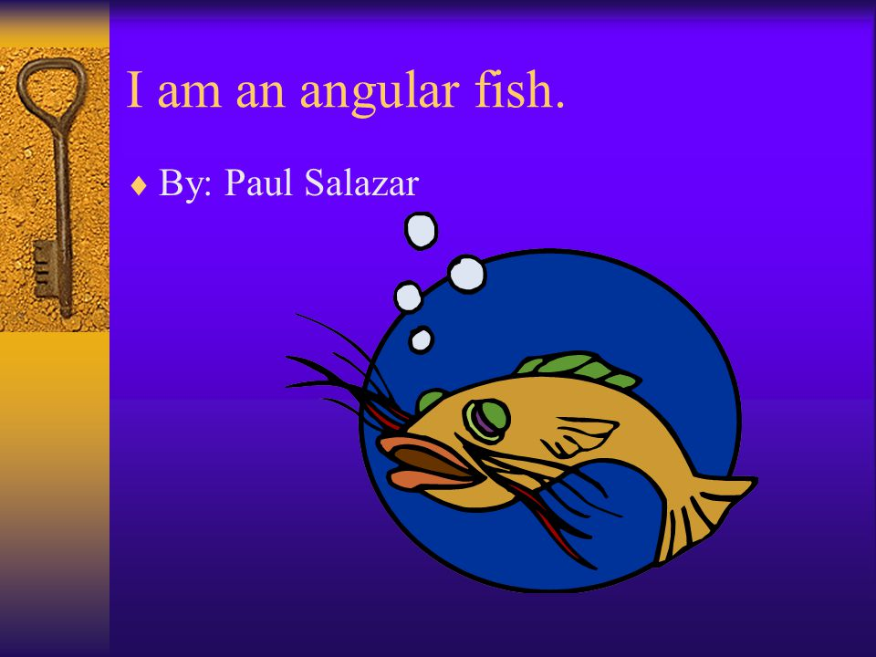 I am an angular fish.  By: Paul Salazar