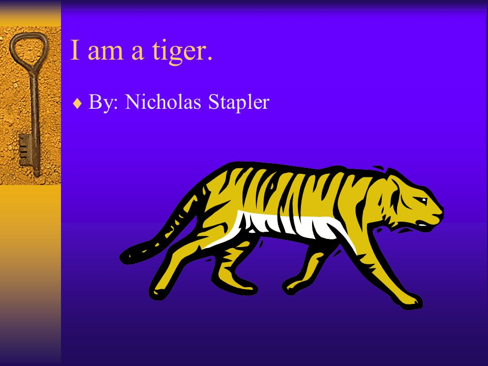 I am a tiger.  By: Nicholas Stapler