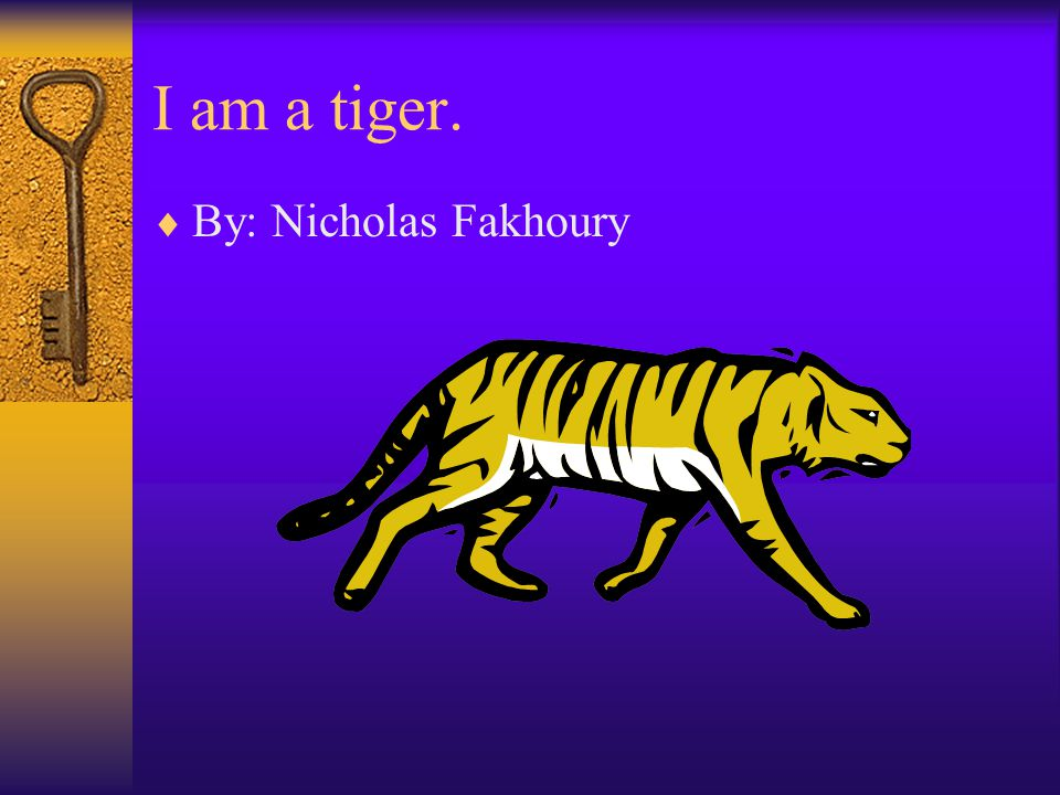 I am a tiger.  By: Nicholas Fakhoury