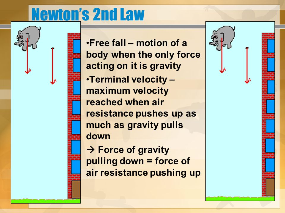 Newton's 3rd Law For every action there is an equal but opposite reaction ***Action and reaction forces are applied to different objects, but act in pairs (both contact and field forces)  These forces occur in pairs at the same time, but do not cancel out.