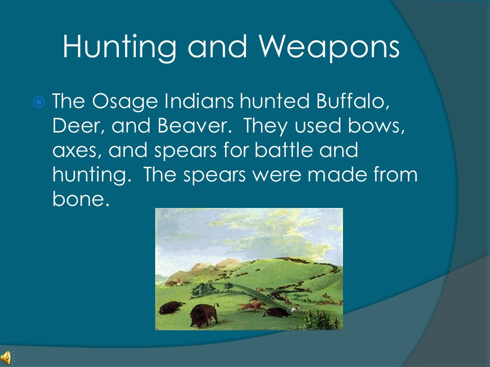Hunting and Weapons  The Osage Indians hunted Buffalo, Deer, and Beaver. They used bows, axes, and spears for battle and hunting. The spears were mad