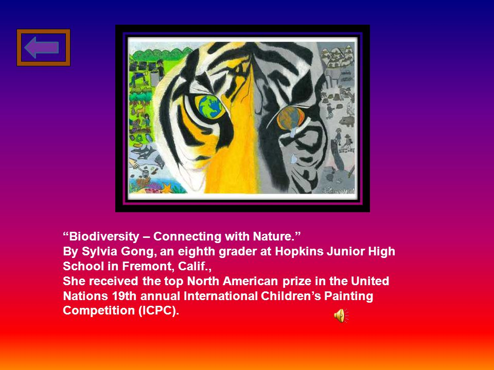 Sylvia Gong Biodiversity – Connecting with Nature. Junior High Room