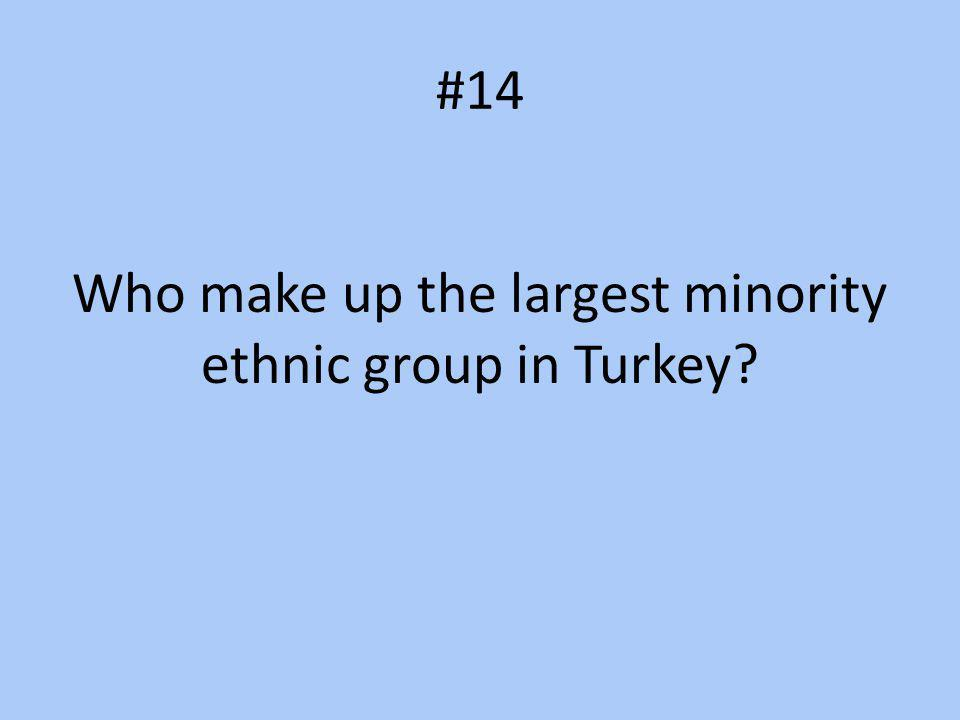 #14 Who make up the largest minority ethnic group in Turkey?