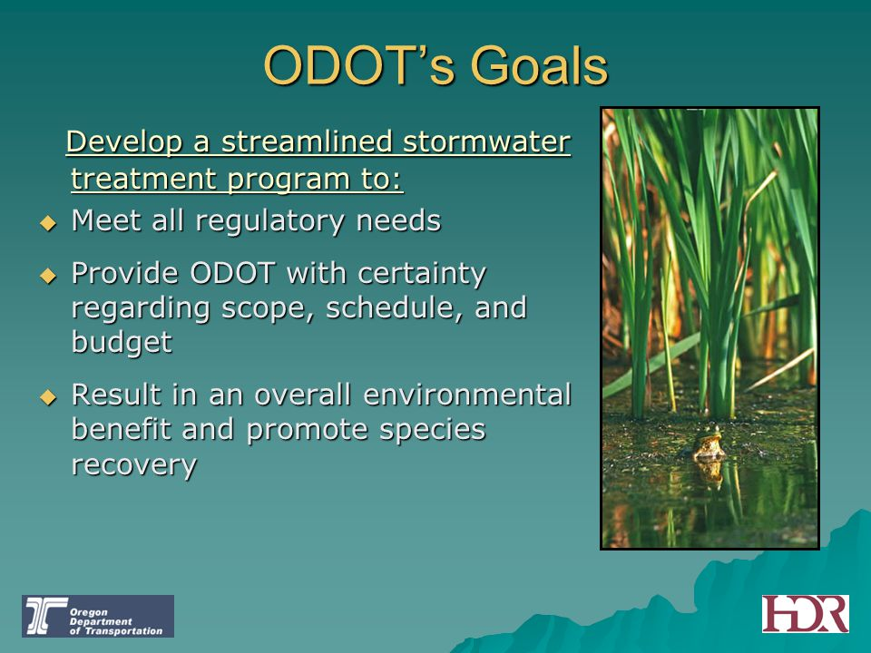 ODOT's Goals Develop a streamlined stormwater treatment program to: Develop a streamlined stormwater treatment program to:  Meet all regulatory needs