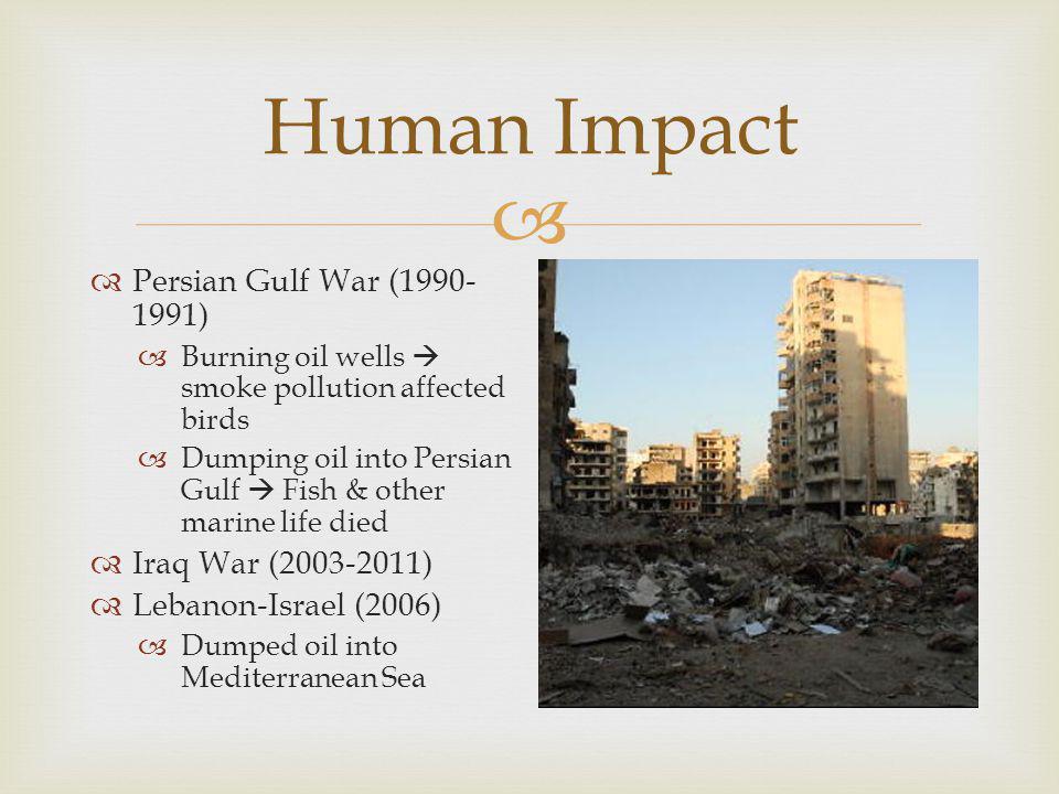  Human Impact  Persian Gulf War (1990- 1991)  Burning oil wells  smoke pollution affected birds  Dumping oil into Persian Gulf  Fish & other mar