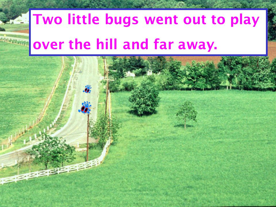 Two little bugs came marching back.