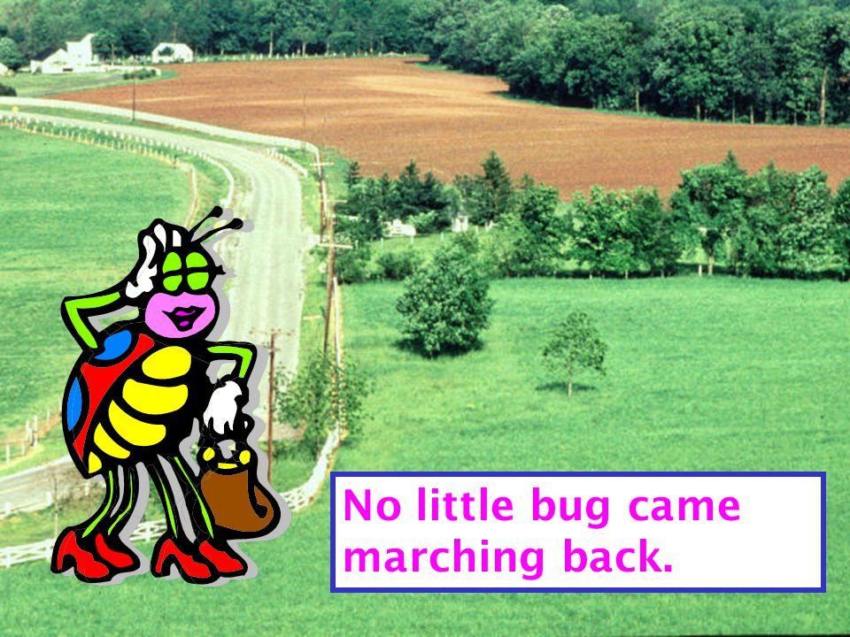 Mother Bug said, clack, clack, clack, clack!