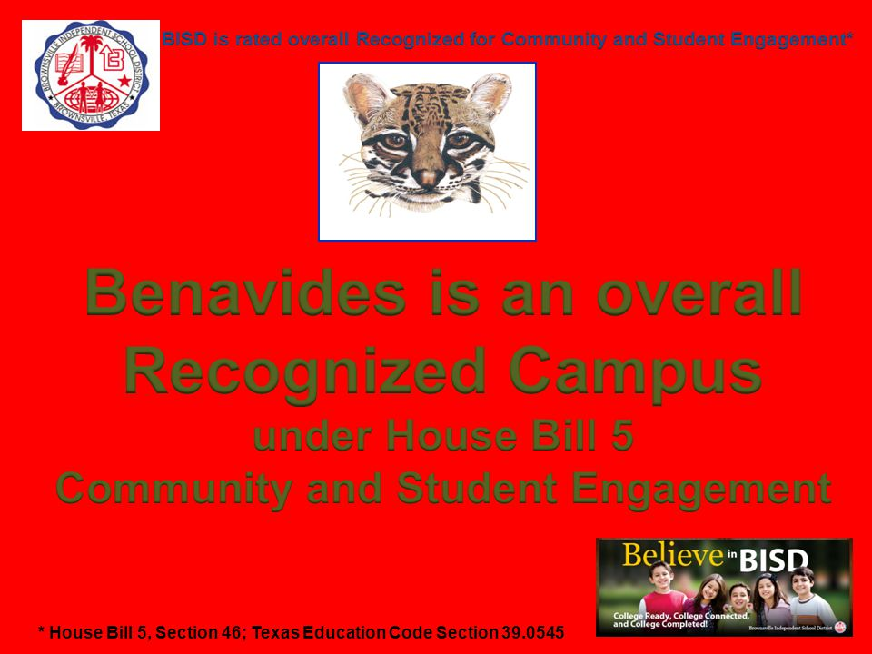 Fine Arts Program rated Recognized Benavides Elementary provides students with the opportunity to participate in the following programs /activities: Ballroom, Choir, Chess, Spring Play, Christmas Musical, Destination Imagination, Honors Choir, & 21 st Century Ballroom Class.