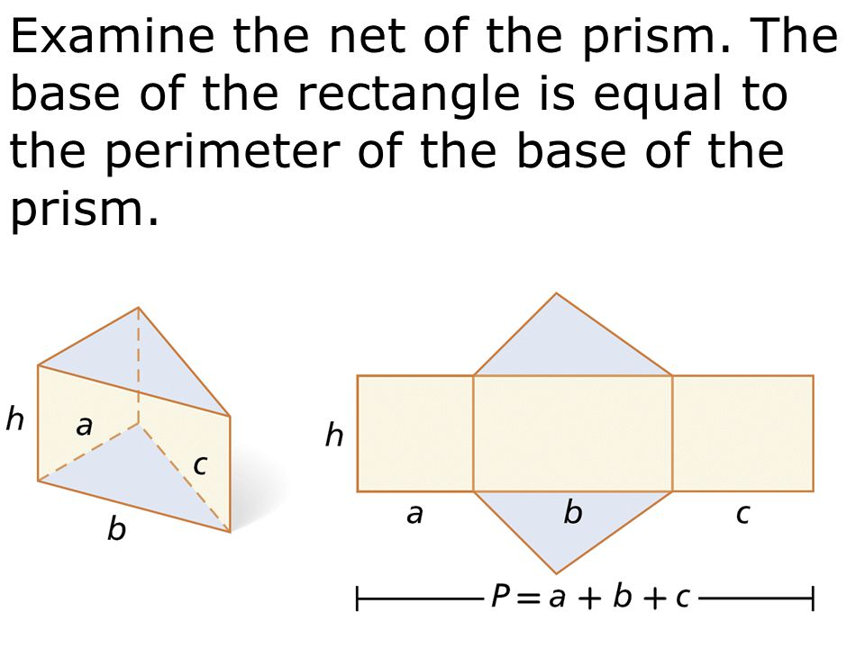 Examine the net of the prism. The base of the rectangle is equal to the perimeter of the base of the prism.
