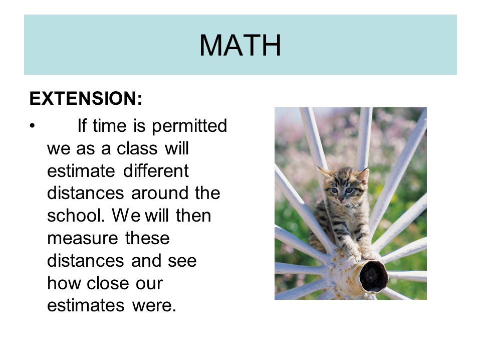 MATH EXTENSION: If time is permitted we as a class will estimate different distances around the school. We will then measure these distances and see h