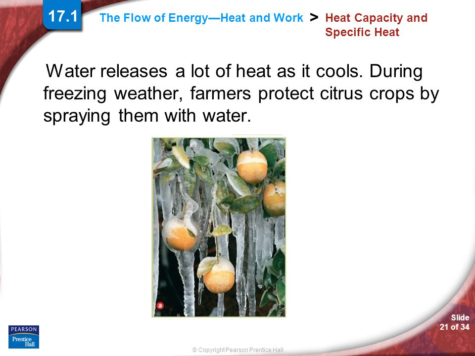 Slide 21 of 34 © Copyright Pearson Prentice Hall > The Flow of Energy—Heat and Work Heat Capacity and Specific Heat Water releases a lot of heat as it cools.