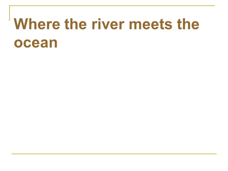Where the river meets the ocean