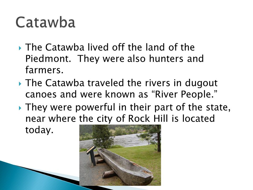  The Catawba lived off the land of the Piedmont. They were also hunters and farmers.  The Catawba traveled the rivers in dugout canoes and were know