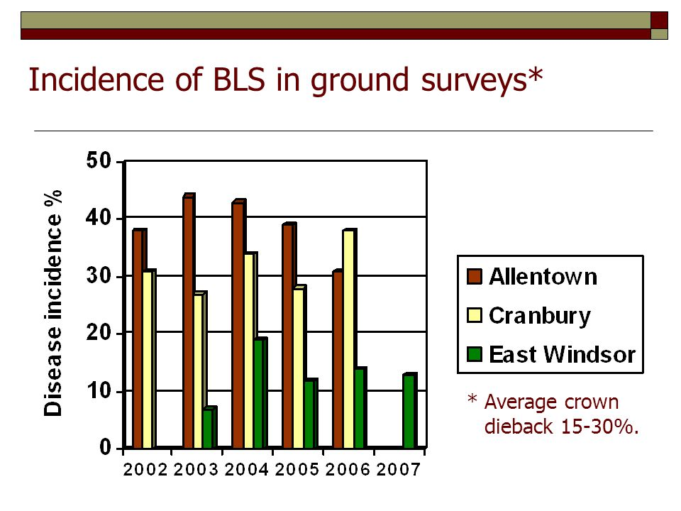 Incidence of BLS in ground surveys* *Average crown dieback 15-30%.