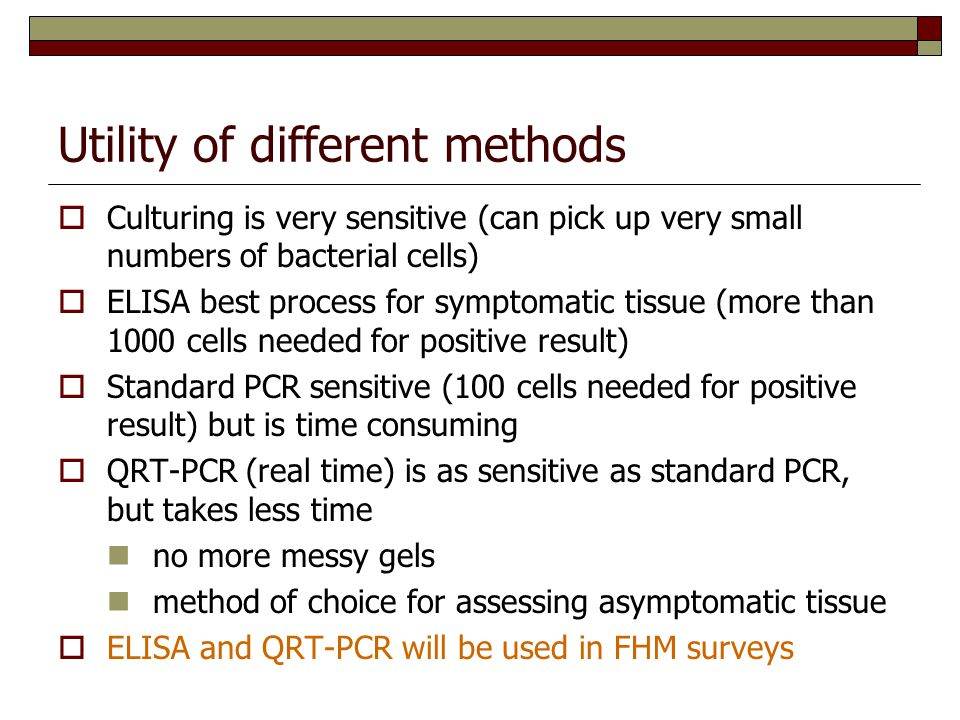 Utility of different methods  Culturing is very sensitive (can pick up very small numbers of bacterial cells)  ELISA best process for symptomatic tissue (more than 1000 cells needed for positive result)  Standard PCR sensitive (100 cells needed for positive result) but is time consuming  QRT-PCR (real time) is as sensitive as standard PCR, but takes less time no more messy gels method of choice for assessing asymptomatic tissue  ELISA and QRT-PCR will be used in FHM surveys