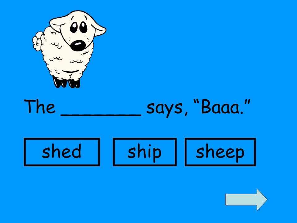 The _______ says, Baaa. shedshipsheep