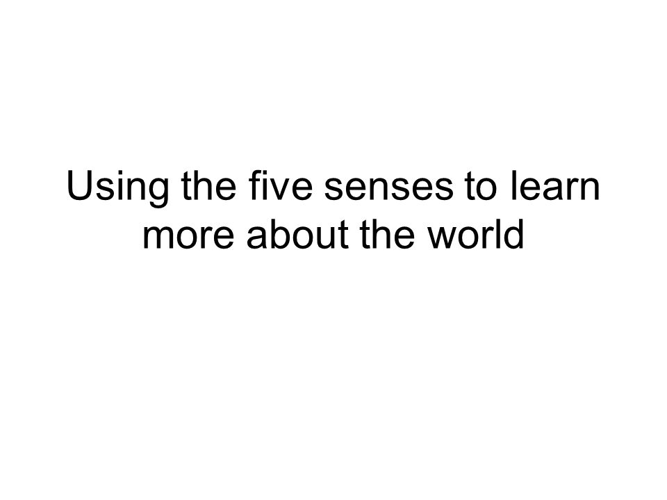 Using the five senses to learn more about the world