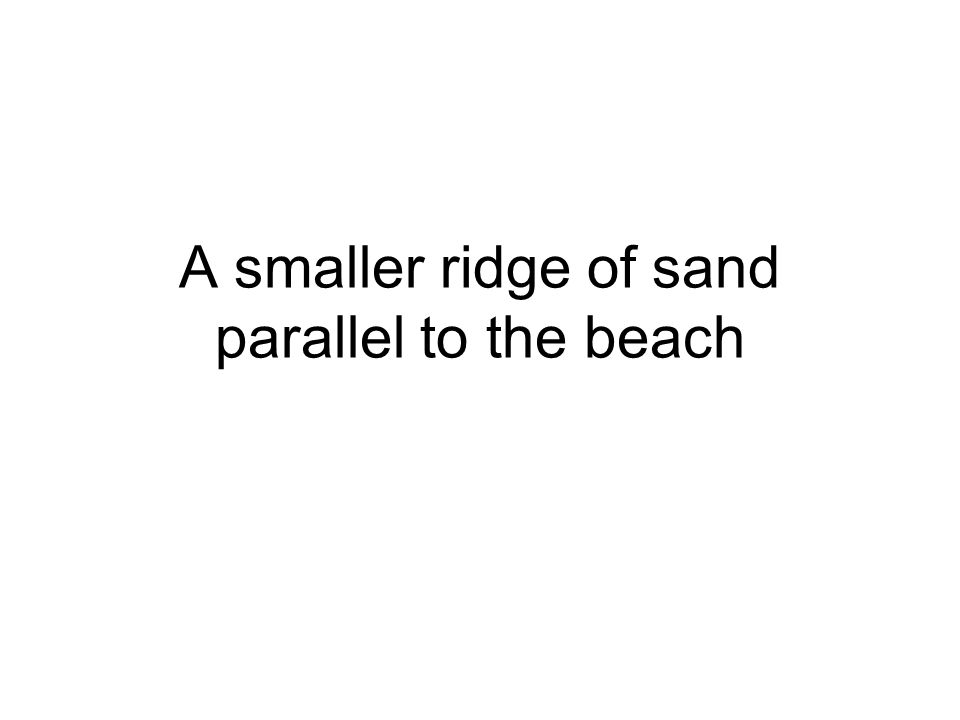 A smaller ridge of sand parallel to the beach