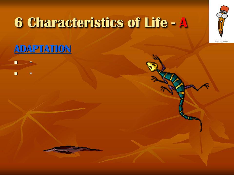 RESPONSE - - - 6 Characteristics of Life - R