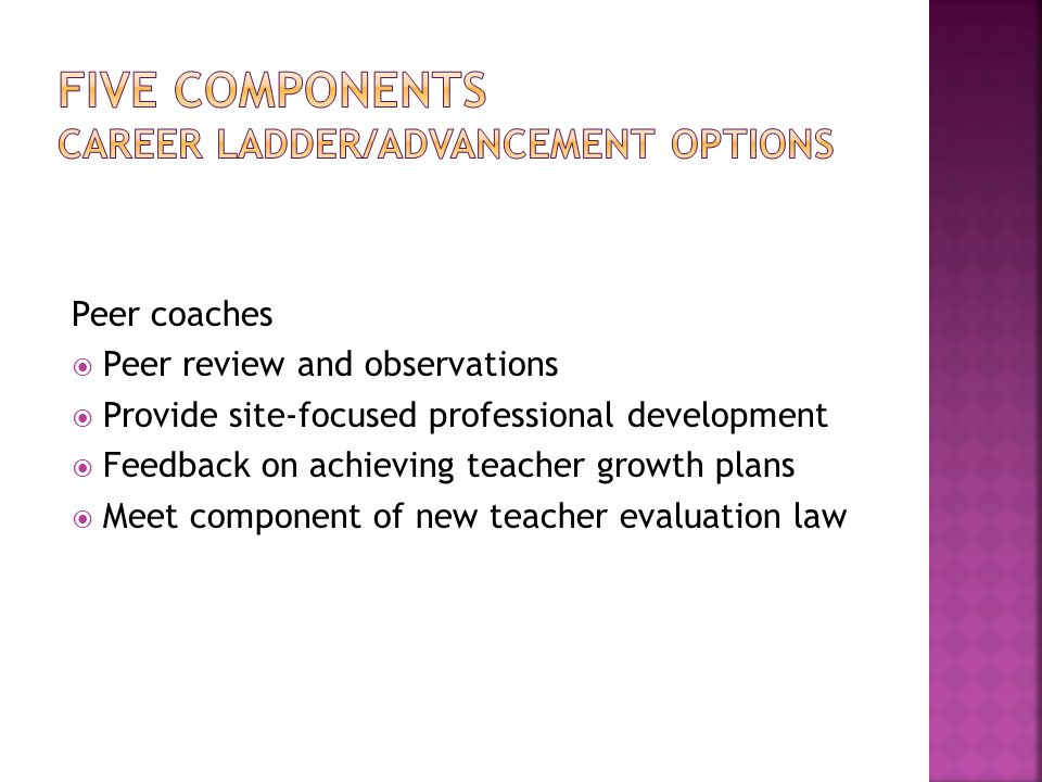 Peer coaches  Peer review and observations  Provide site-focused professional development  Feedback on achieving teacher growth plans  Meet component of new teacher evaluation law