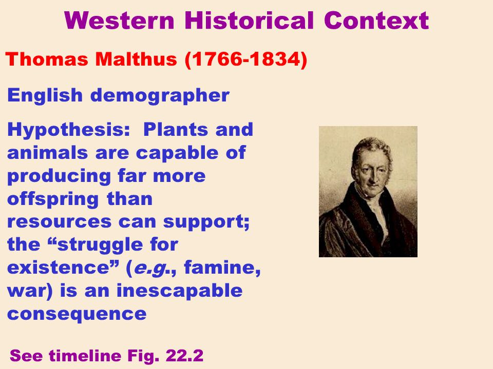 Western Historical Context Thomas Malthus (1766-1834) English demographer Hypothesis: Plants and animals are capable of producing far more offspring t