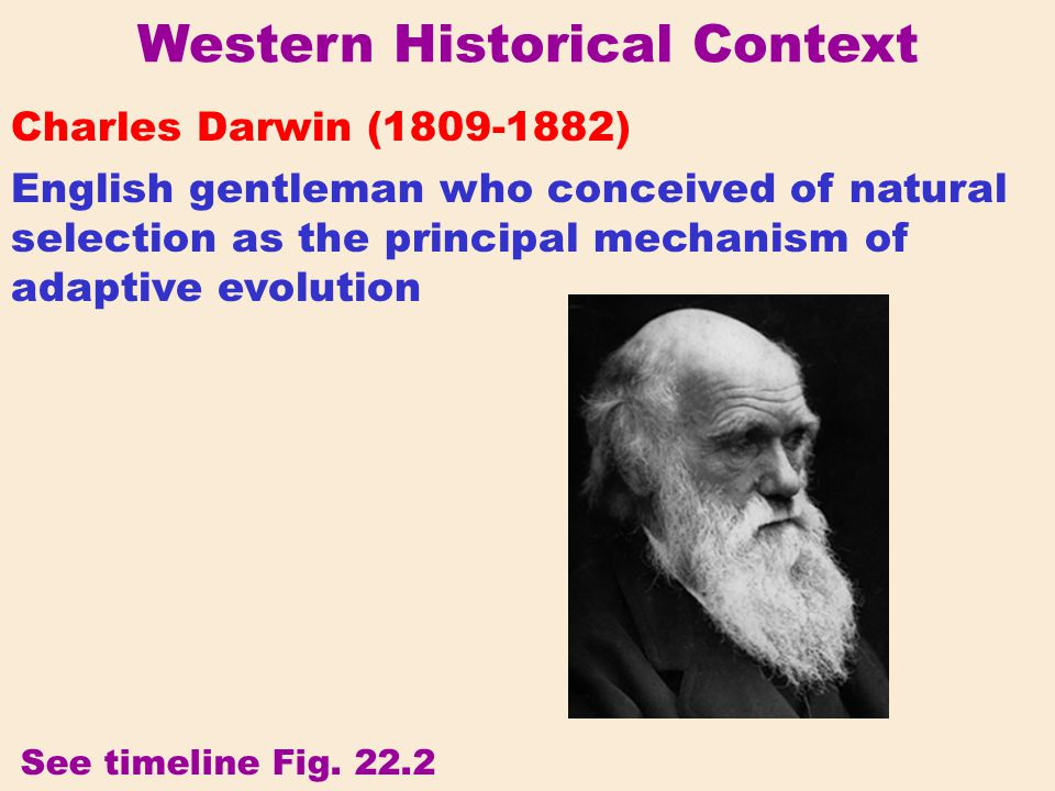 Western Historical Context Charles Darwin (1809-1882) English gentleman who conceived of natural selection as the principal mechanism of adaptive evol