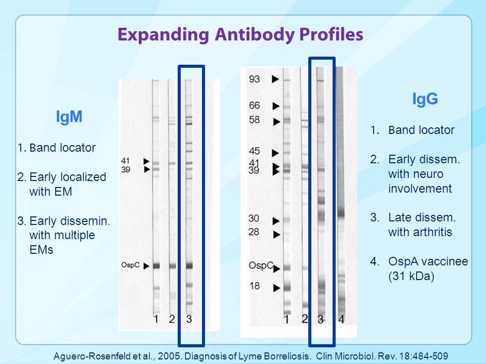 Expanding Antibody Profiles Aguero-Rosenfeld et al., 2005.