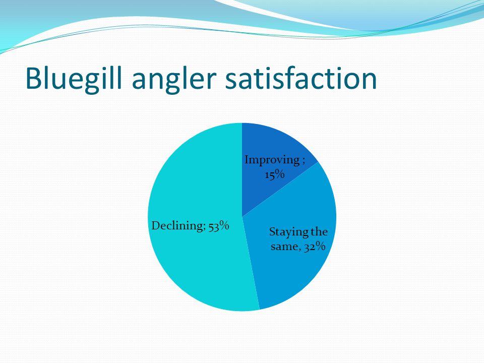 Bluegill angler satisfaction